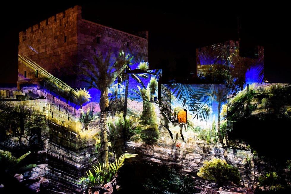 מוזיאון דוד מופע אור קולי (צילום: נפתלי הילגר)