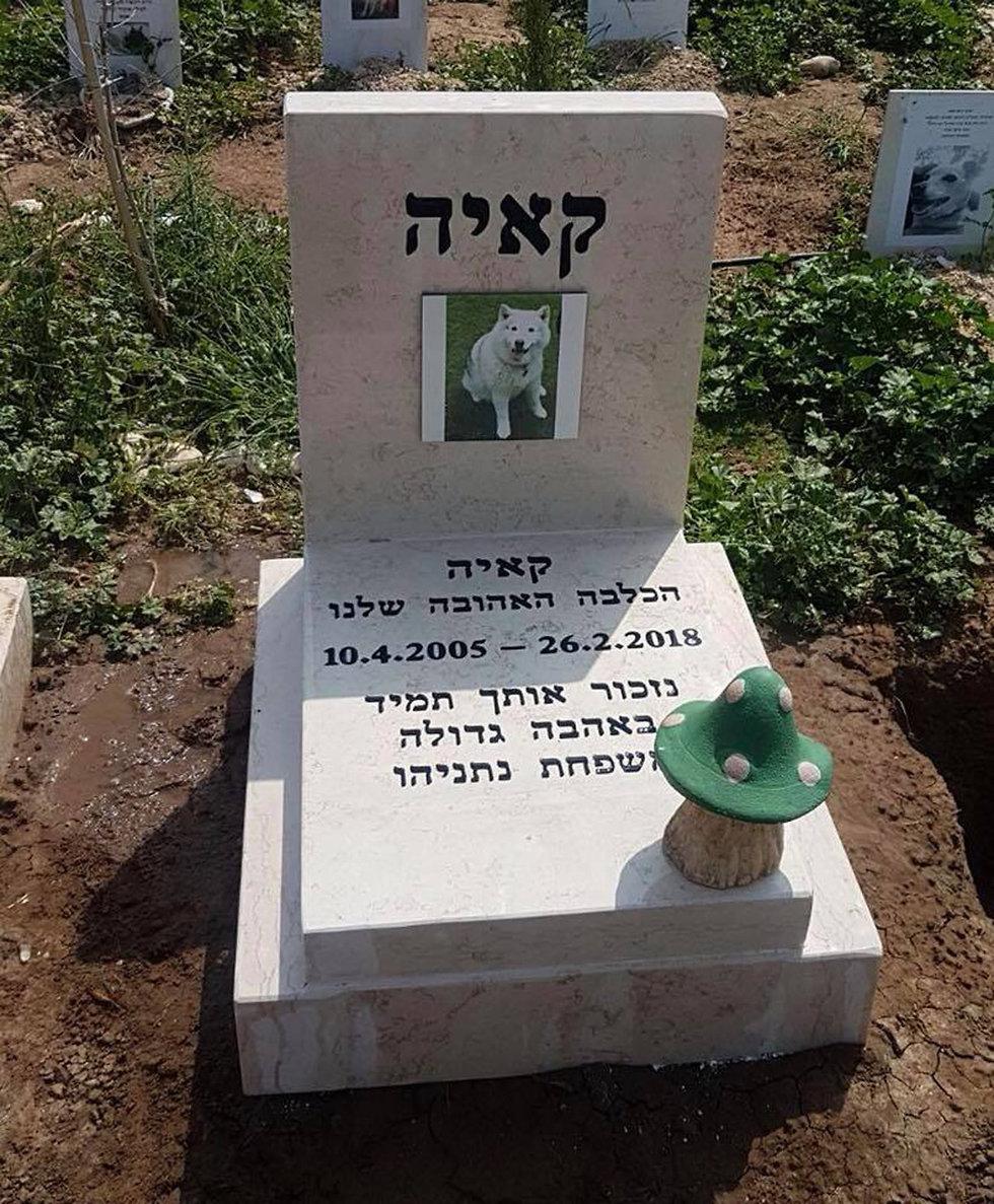 Надгробие на могиле Каи