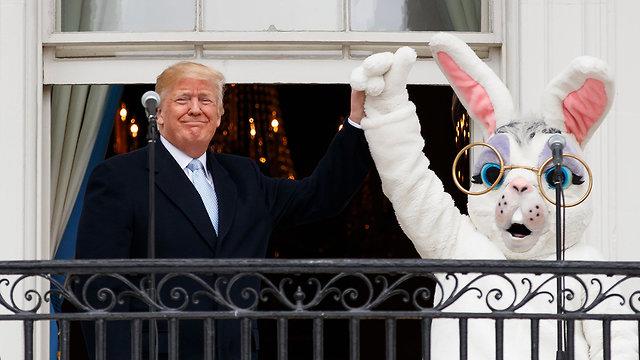 דונלד טראמפ (צילום: AP)