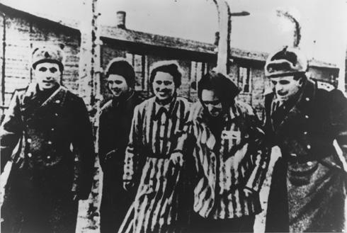 """""""תיעוד רב של הסטודיו הושמד על ידי האס.אס לפני פינוי אושוויץ-בירקנאו בינואר 1945"""". שחרור מחנה אושוויץ (צילום: AP)"""