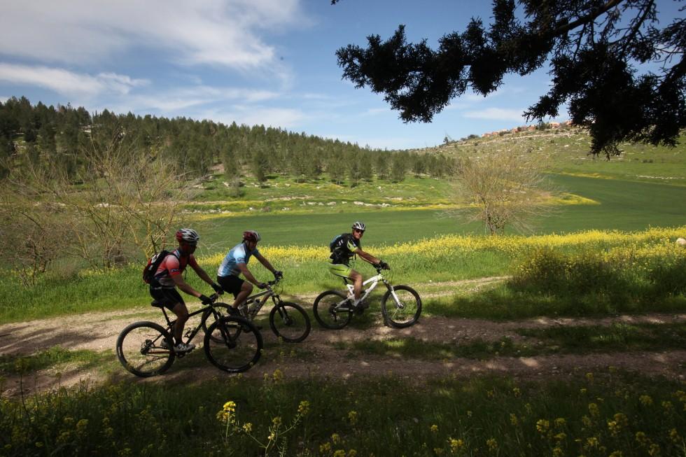 מסלולי אופניים בעדולם (צילום: יוסי זמיר)