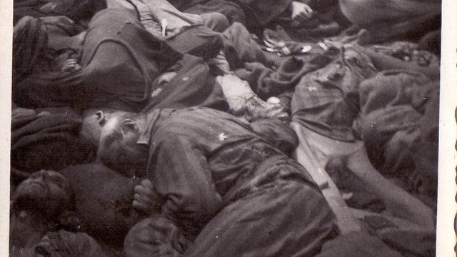 שואה מחנה דכאו  (צילום: ארכיון