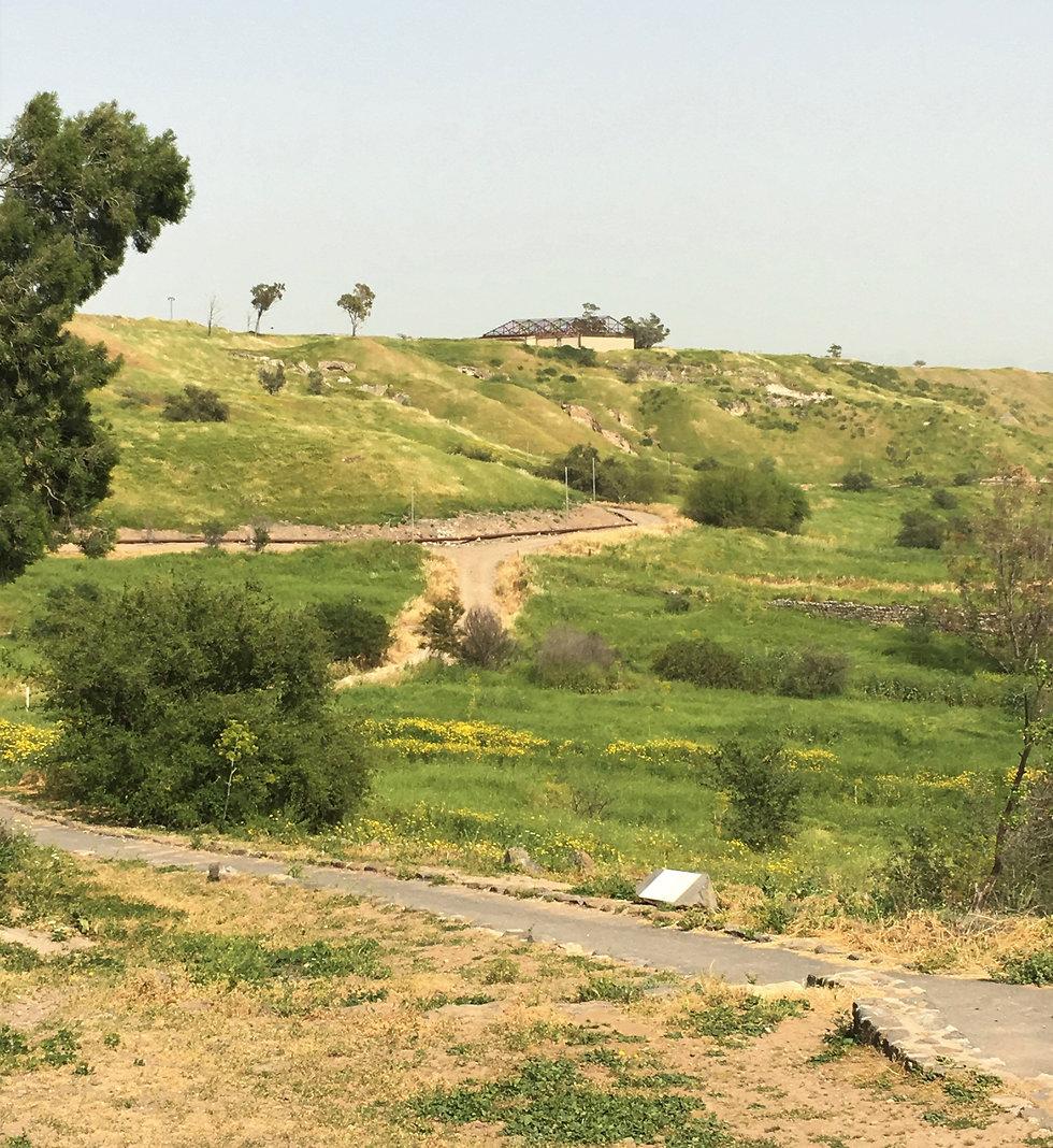 גם לאומי בית שאן (צילום: יעל לרנר)