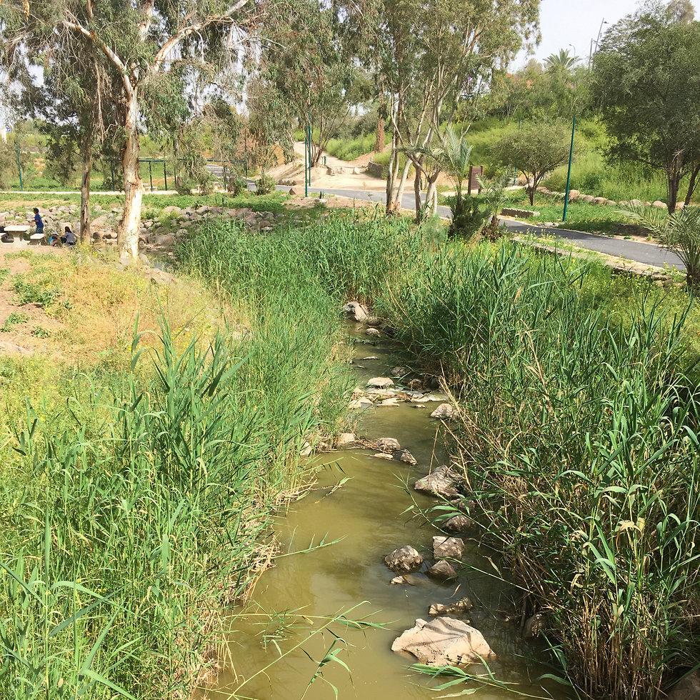 פארק בית שאן (צילום: יעל לרנר)
