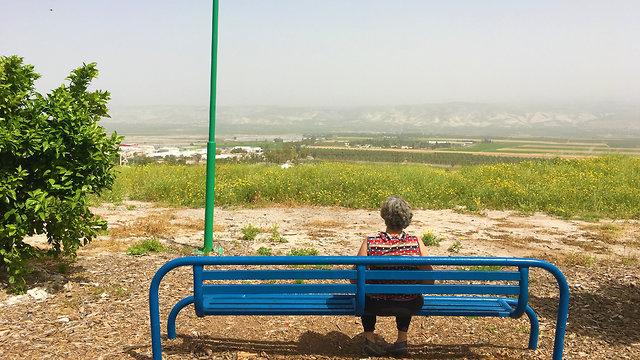 גינת השלום (צילום: יעל לרנר)
