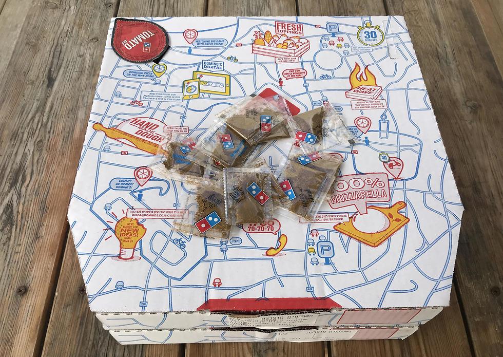 פיצה פלאפל (צילום: תיקי גולן)