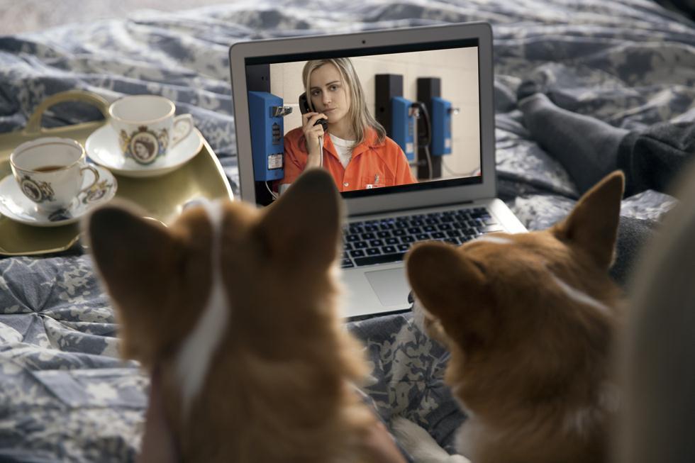 צופים עם כלב בטלוויזיה (צילום: נטפליקס)