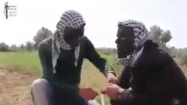 Воздушные змеи стали оружием террористов 8473867286285640360no