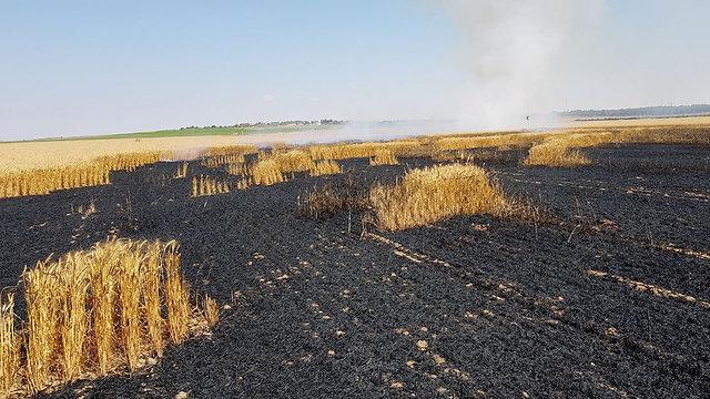 שריפה שדה חיטה מועצה איזורית שער הנגב עפיפון תבערה ()