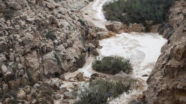 Наводнение в Негеве. Фото: Герцль Йосеф (Photo: Herzl Yossef)