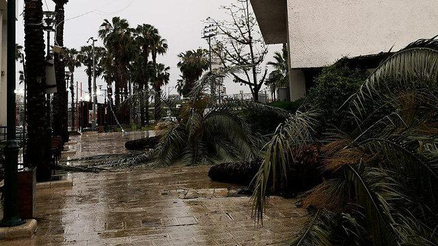 שכונת התקווה בתל אביב (צילום: הילה בנעים)