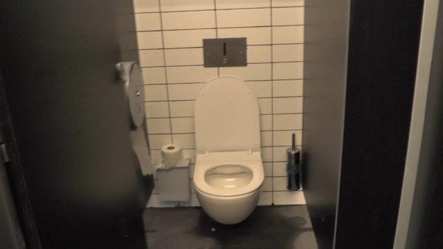 שירותים ציבוריים (צילום: איתי בלומנטל)