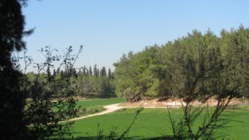 צילום: יהודית גרעין-כל, מתוך ויקיפדיה