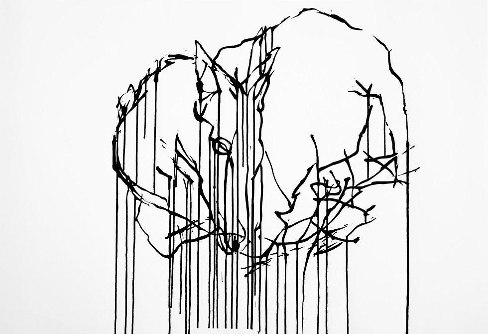 צבע טרי  (evening swan מאת לירון כהן)