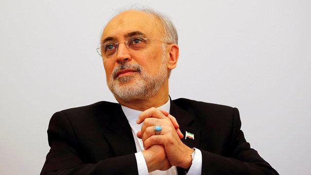 Iran's nuclear chief Ali Akbar Salehi (Photo: Reuters)