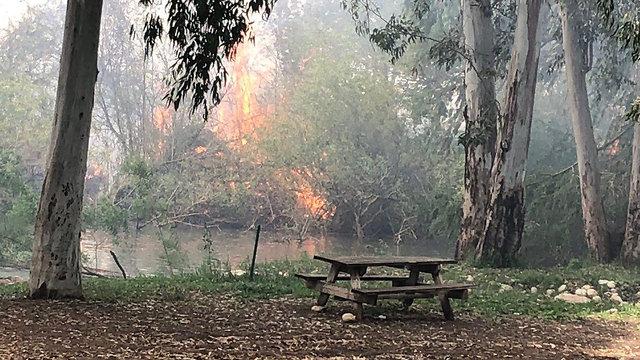 שריפה סמוך לפתח תקווה (צילום: שרית מיארה פלאצי, רשות הטבע והגנים)