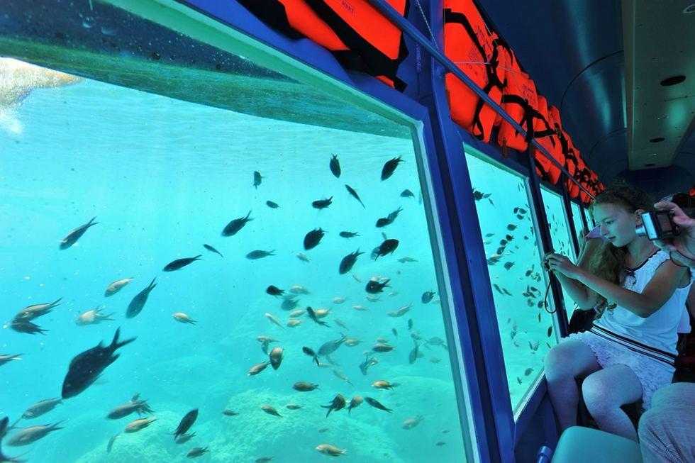 הצוללת הצהובה (צילום: אבישג אוהנה)