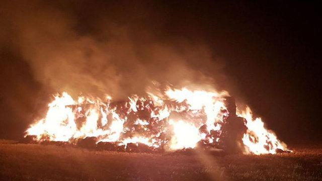 Fire consumes crops in Kibbutz Afikim (Photo: Emek HaYarden Regional Council)