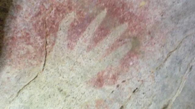 ציור שהתגלה על קיר מערה (צילום: מתוך המחקר)