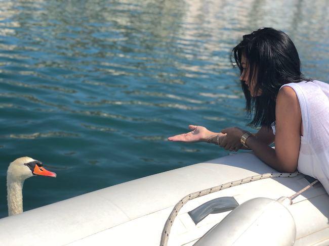 איזה כיף להיתקל בברבור במהלך שיט בין האיים הקרואטיים (אלבום פרטי)