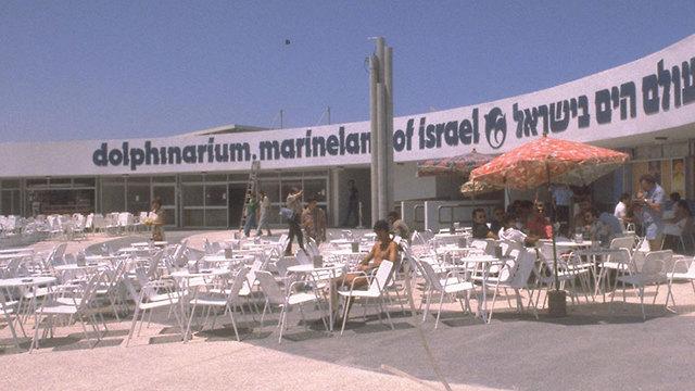 ה דולפינריום ב תל אביב 1981 (צילום: יעקב סער, לע