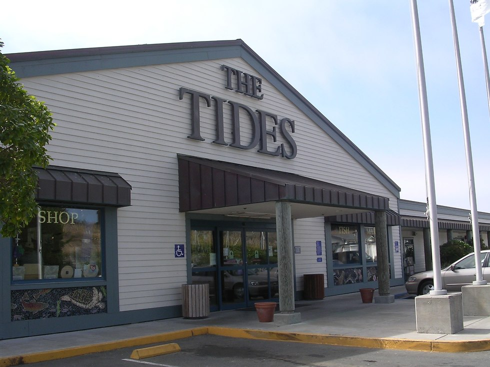 מסעדת THE TIDES שמופיעה בסרט (צילום: יסמין גיל)