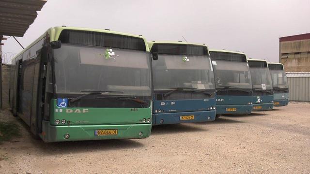 אוטובוסים (צילום: תומריקו)