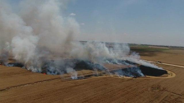 שריפה בשדה חיטה (צילום: חיים לנדסמן)