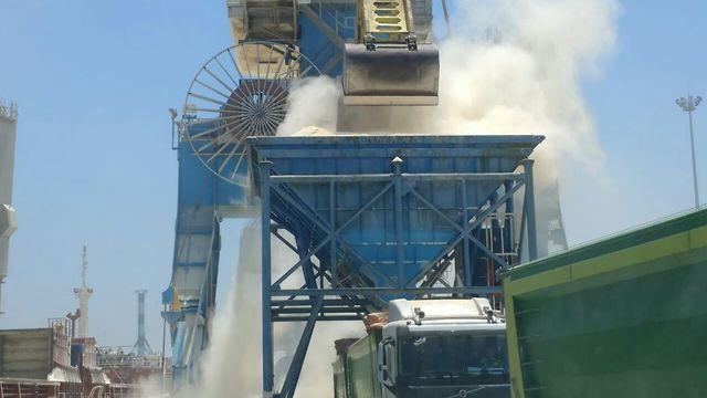פריקת אבקת התירס בנמל אשדוד (צילום: דרור אריאלי המשרד להגנ