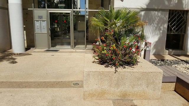 רחוב יאיר רוזנבלום תל אביב (צילום: עמית הובר)