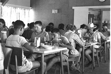 ילדים ונשים בהריון קיבלו את האוכל הכי שווה. חדר האוכל של קיבוץ רביבים, 1964 (צילום: דוד אלדן, לשכת העיתונות הממשלתית)