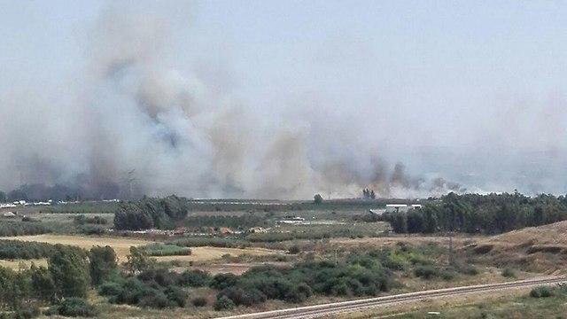 שריפה ב אזור ירקון צומת ירקון (צילום: עמוס בדש)