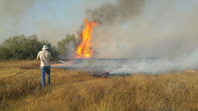 אש שריפה שמורת טבע נחל ה בשור ב דרום להבות נזק (צילום: גלעד גבאי רשות הטבע והגנים)
