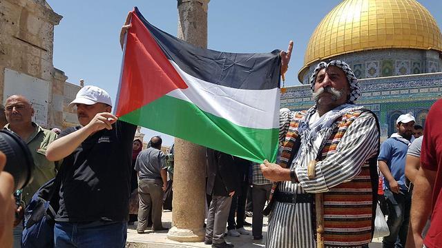 תפילה ל הרוגים ב עזה מתפללים מוסלמים ב הר הבית ירושלים מסגד אל אקצא רמדאן ירושלים (צילום: חסן שעלאן)