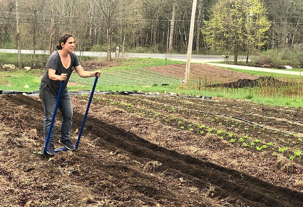 Bonnie Levis working on the farm  (Photo: Oliver Levis)
