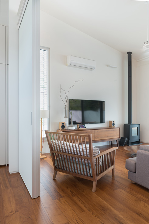 בסלון: ספה אחת וקמין (צילום: גלית דויטש)