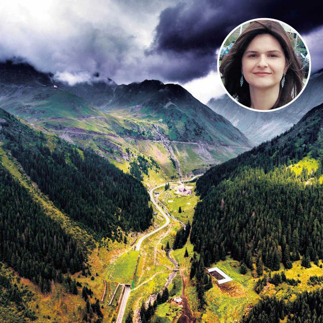 הרים וערפדים ברומניה. עדי וייץ