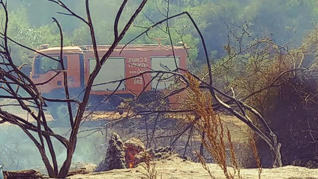 Damage from fire at Karmia Nature Reserve