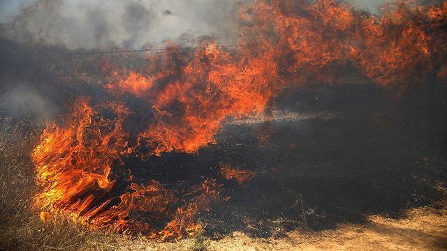 Пожар в Израиле из-за огненных змеев из Газы
