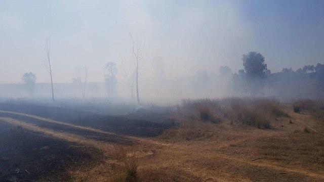 שריפה יער בארי  ()