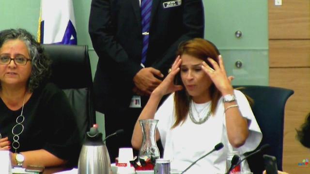 ועדה לקידום מעמד הנשים ב עזה כנסת (צילום: ערוץ הכנסת)