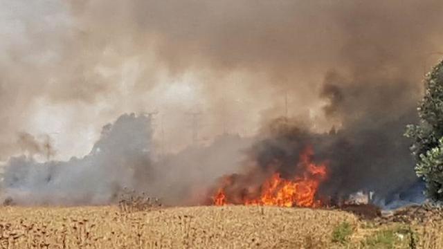 שריפה במכללת ספיר  (צילום: בראל אפרים)