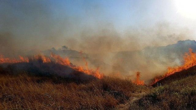 שריפה מועצה אזורית אשכול (צילום: רועי עידן )