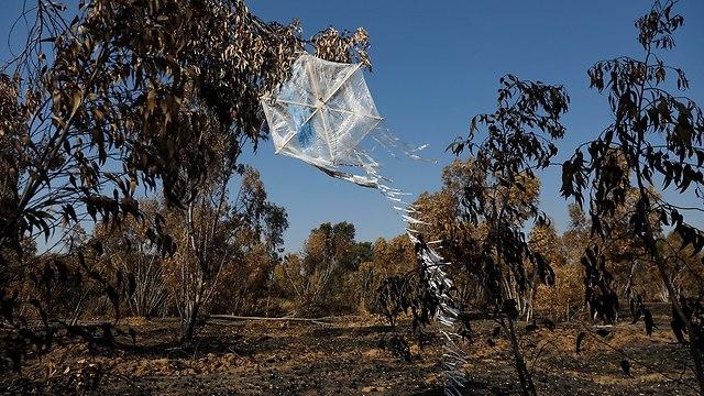עפיפון שהוצמד לו בקבוק תבערה ב יער בארי (צילום: EPA)
