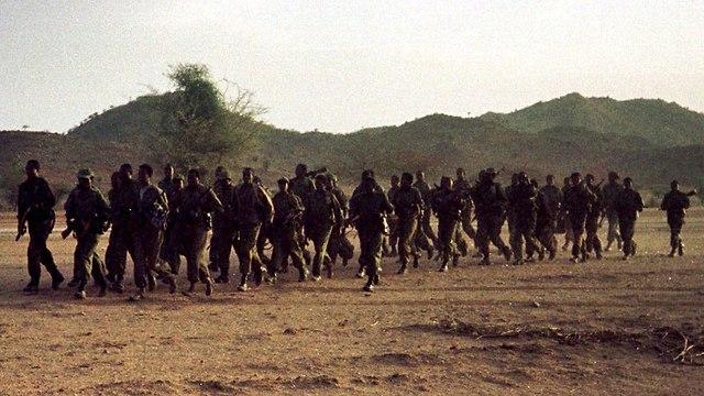 מלחמת אתיופיה אריתריאה  (צילום: AP)