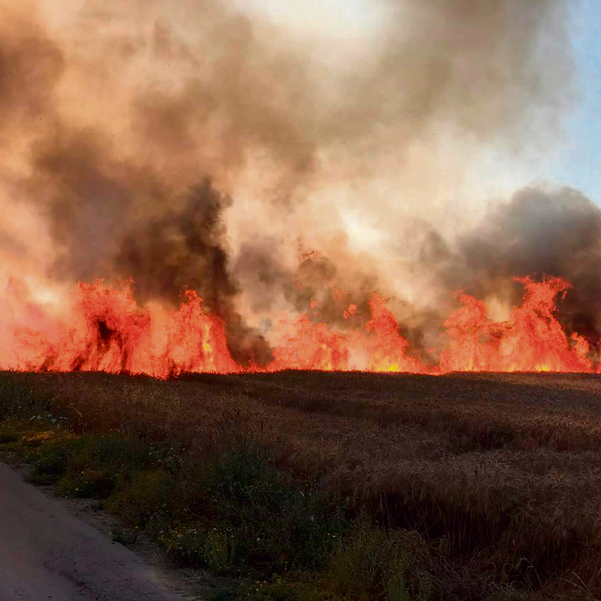 A fire in the fields of Nahal Oz. Photo taken by Yanka'le Cohen, 84, one of the founders of Kibbutz Nahal Oz, a farmer and an advisor on potato crops in Israel and abroad