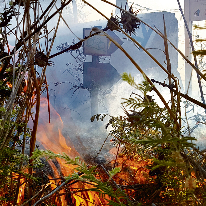 A fire in the Be'eri Crater Nature Reserve. Photo taken by Roee Idan, 37, of Kibbutz Kfar Aza, Ynet's photographer in the south