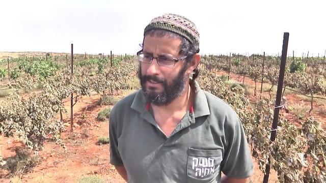 איתמר וייס – מנהל חקלאות משק אחיה (צילום: משי בן עמי)