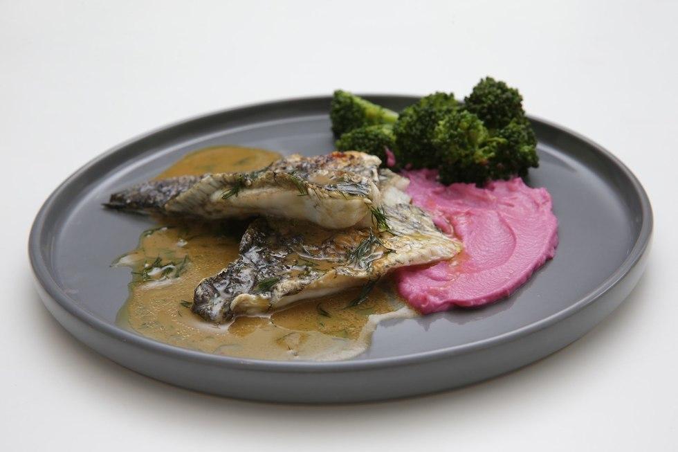 דג קיצי (צילום: ירון ברנר)