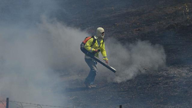 שריפה בנחל עוז בעקבות עפיפוני תבערה (צילום: אבי רוקח)